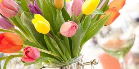 Easter Sunday Menu La Terrazza